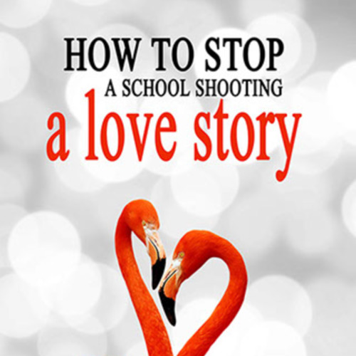 BKDell - How to Stop a School Shooting_Cover.jpg